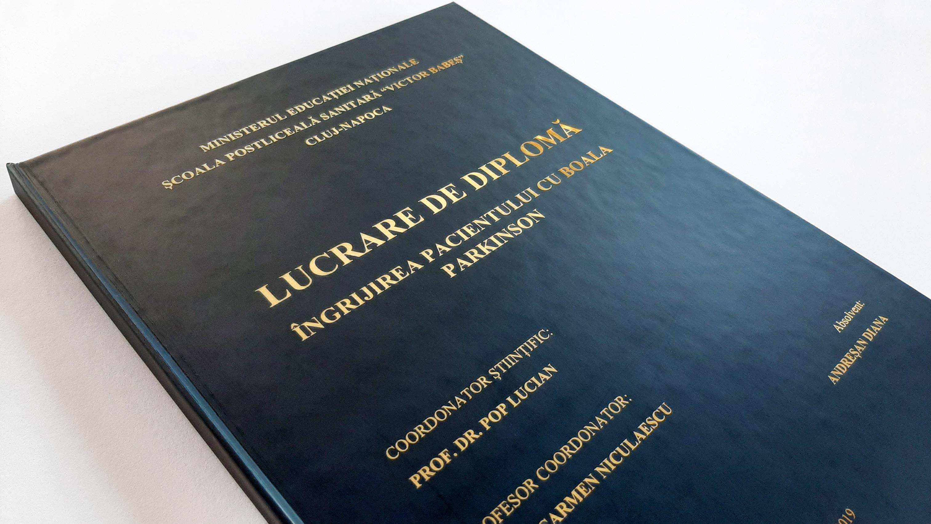 lucrare diploma folio